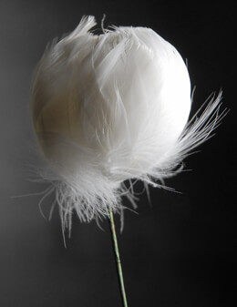 "White Feather Flower 18"" wire stem"