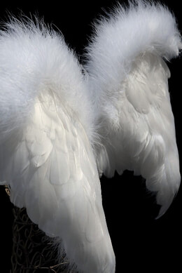 "Handcrafted 21"" Angel Wings White Feather with Ostrich Trim 21in"