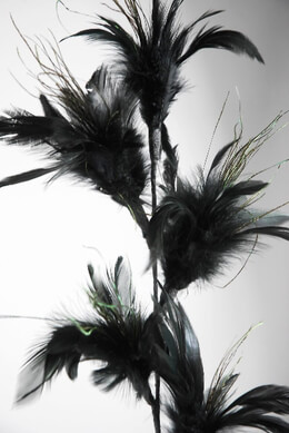 Wired Black Feather Branch  32in