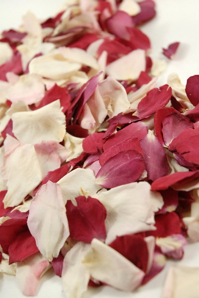 Natural Freeze Nirvana Red White Blush Flower Petals 5 cups