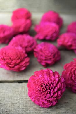 12 Sola Flowers Pink Chorki Flowers