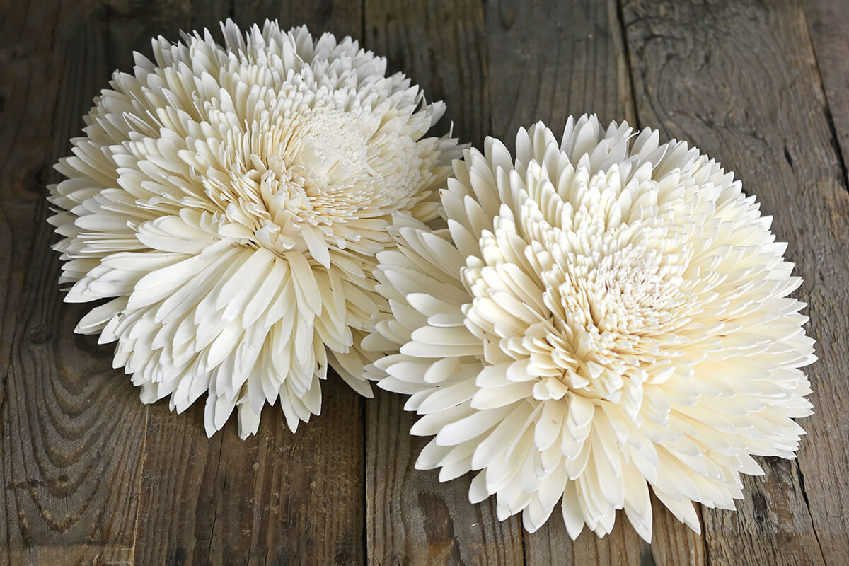 2 Large 9in Sola Zinnia Flowers 25cm Sola Flowers
