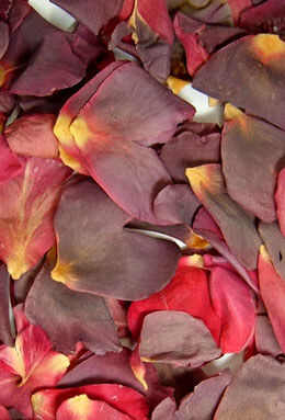 Preserved Rose Petals Black Cherry ;5 Cups