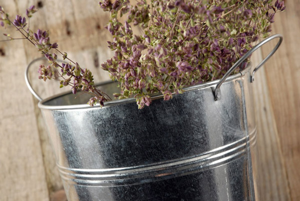French Flower Market 17 Quot Bucket With Handles