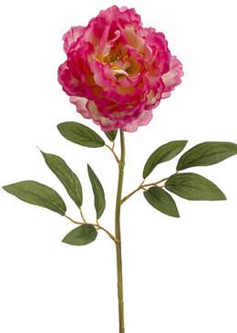 Fuchsia & Cream Silk Peony Flowers