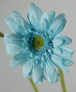 12 Silk Aqua Blue Gerbera Daisies