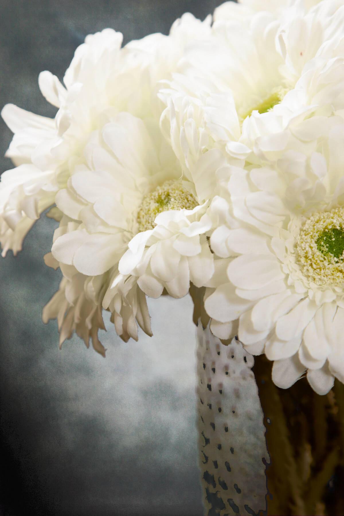24 cream white gerbera daisy flowers 9 izmirmasajfo