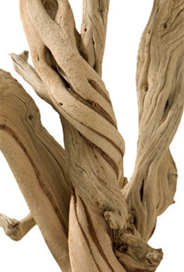 Sandblasted Ghostwood Branches 12in California Driftwood Sanitized
