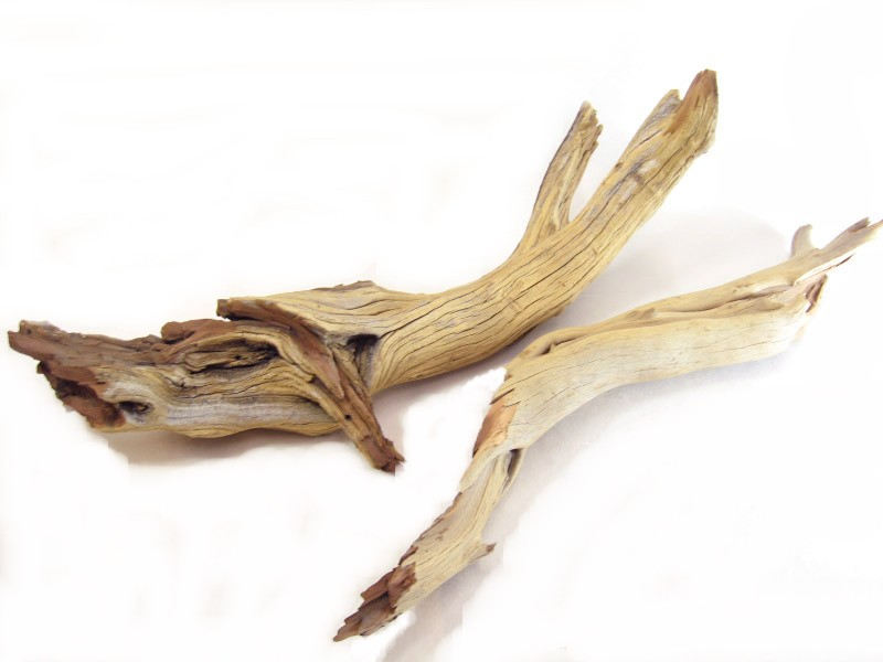 Sandblasted Ghostwood Branches 12in (California Driftwood) Sanitized