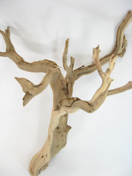 Natural Ghostwood Branches 16 22in Sanded And Sanitized