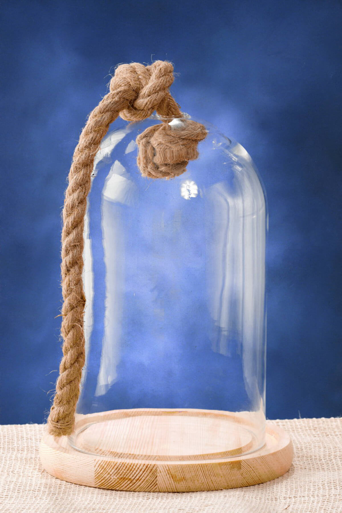 Nautical Glass Bell Jar With Wood Base Amp Rope 9 25 In
