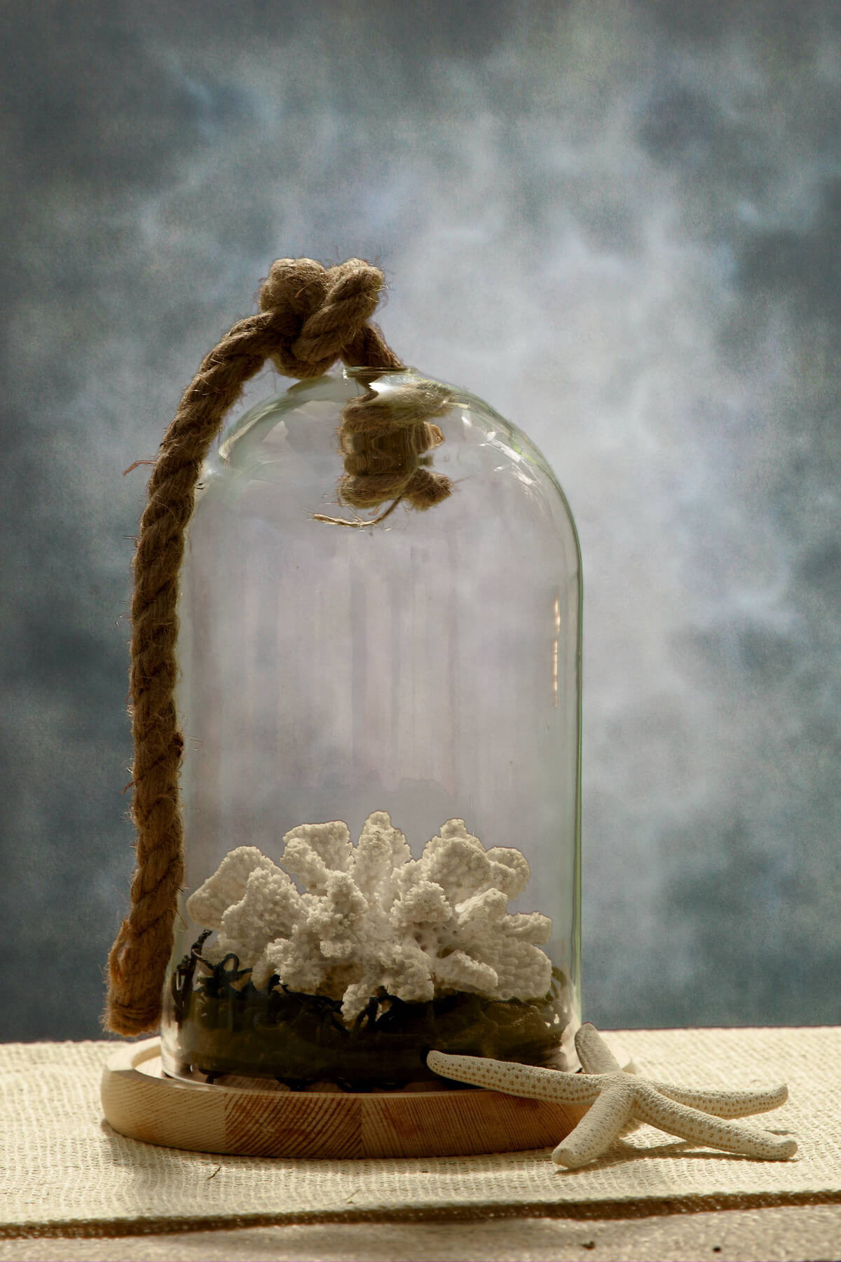 9 Nautical Glass Bell Jar With Wood Base Amp Rope