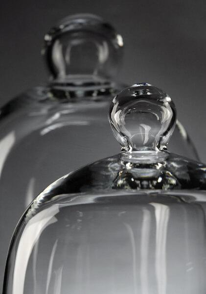 Glass Bell Jars  (set of 2)
