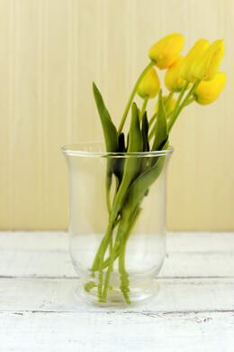 Glass Hurricane Vase & Candleholder