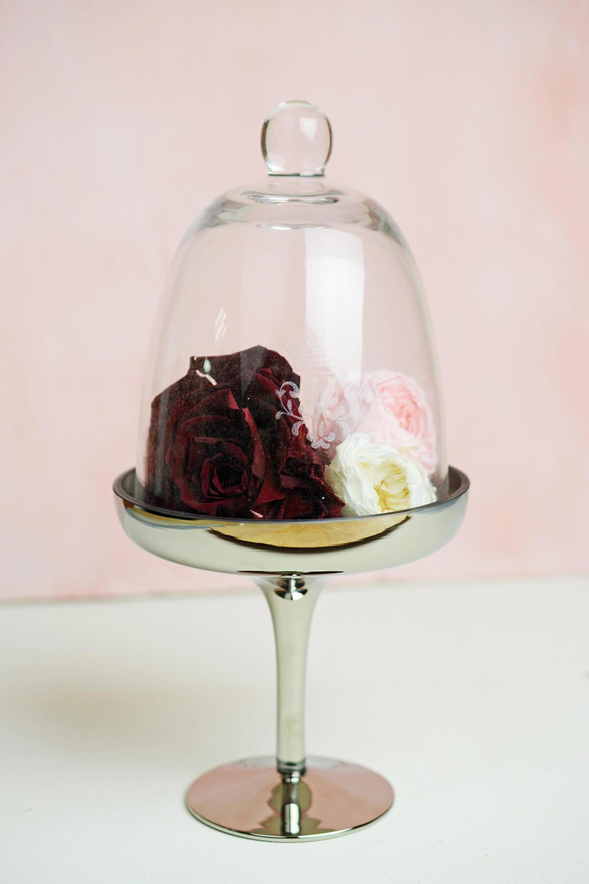 Glass & Silver Pedestal 10in Dessert Stand Cloche