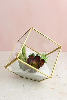 Glass Terrarium Cube Brass 4.7in