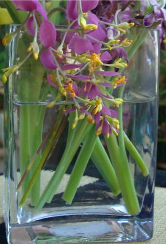 Rectangle Glass Vase 4x6