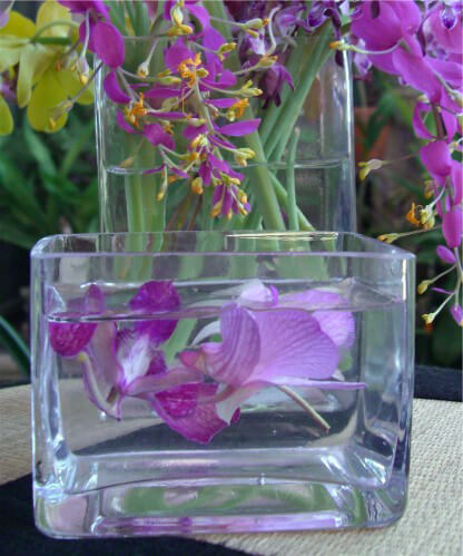 Small Glass Rectangular Vase 3x4