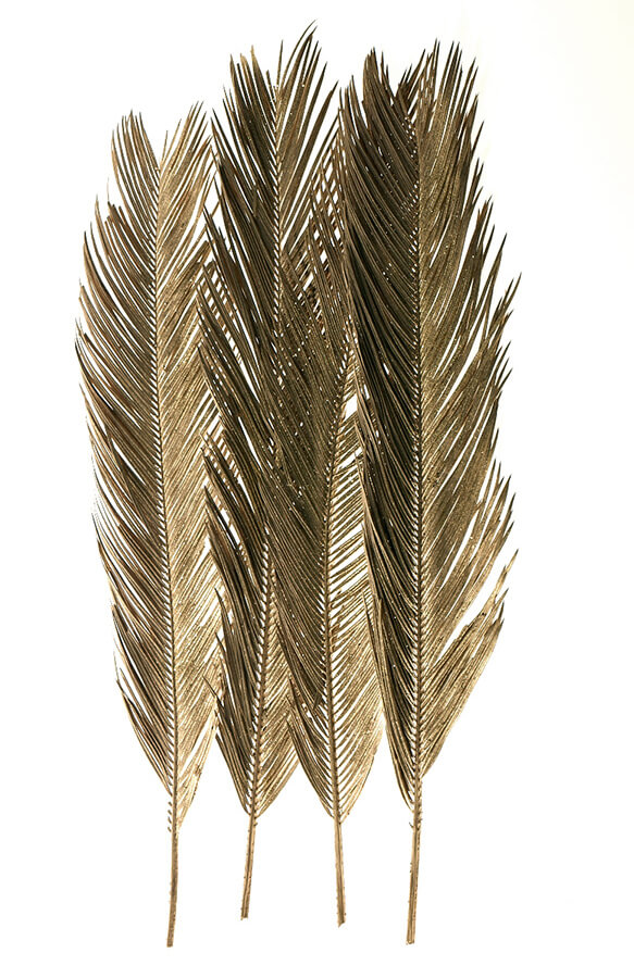 "6 Gold Feather Branches 34"" tall"