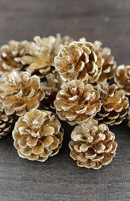Gold Pine Cones .5lb 17-22 Cones
