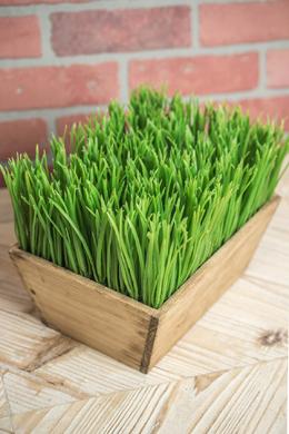 Faux Grass in Planter Box 10in