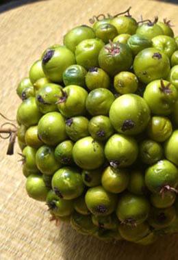 "Green Deco 4.5"" Berry Ball"