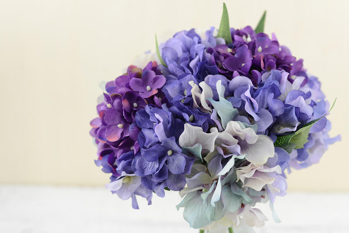 Hydrangea bouquet purple in