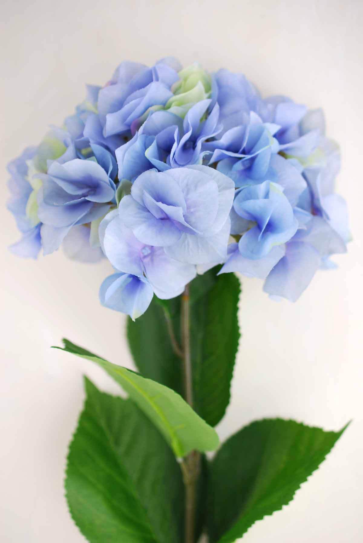 Blue Silk Hydrangea Flowers