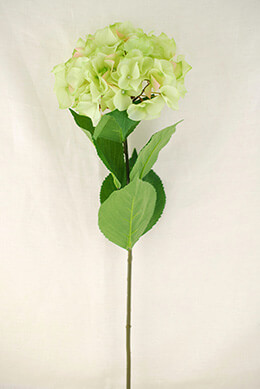 Hydrangea Spray Green 29in
