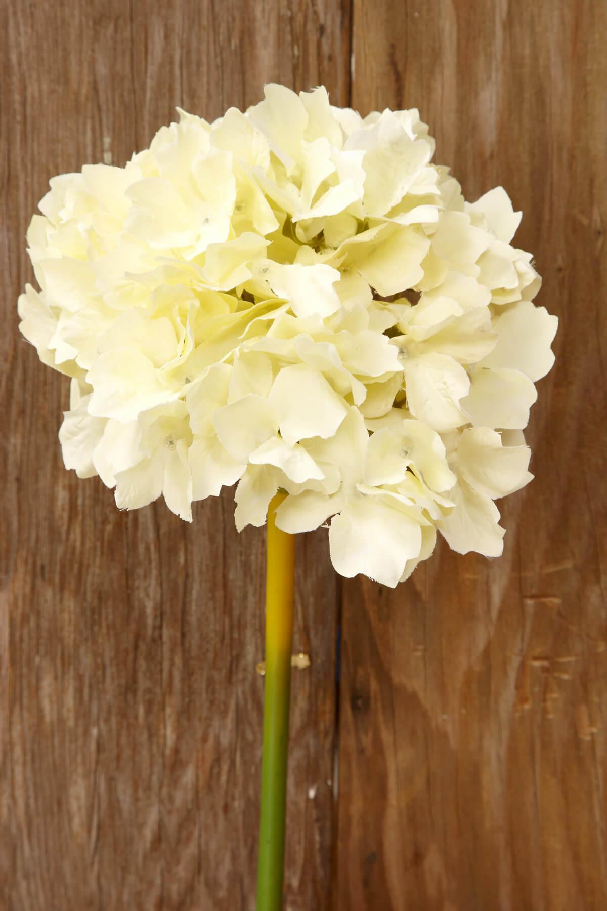 White silk hydrangea flowers ivory white silk hydrangea flowers mightylinksfo Image collections