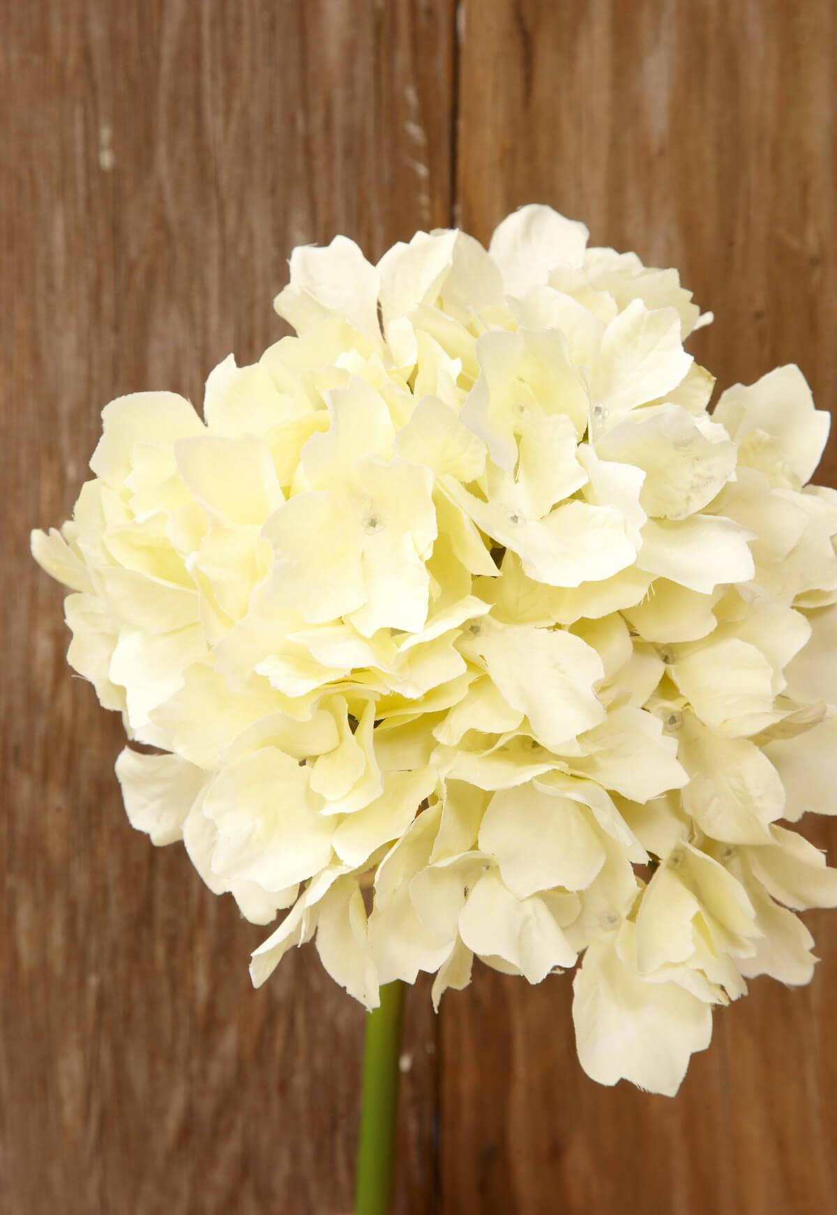 Ivory White Silk Hydrangea Flowers