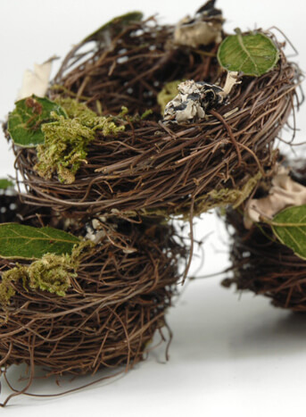 Good Bird Nests 3 X3 Angel Vine Leaves, Moss U0026 Lichen Nice Design