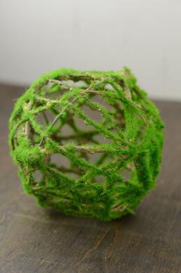Kiwi Moss Twig Ball 6in