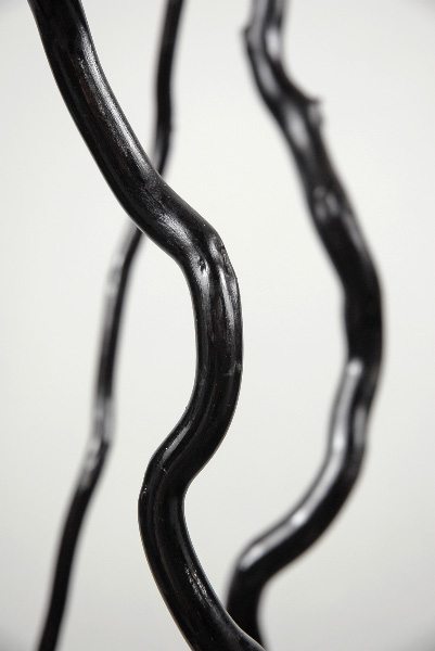 3 Curly Asian Kuwa Branches Black 51in.