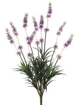 Lavender Bush X9  Lavender 14in