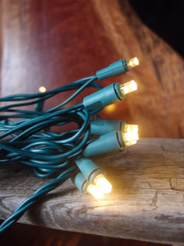70 Outdoor Warm White LED 5mm Polka Dot String Lights, 23.6 FT Green Cord, Weatherproof, Expandable