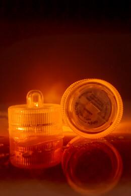 10 Orange Floralytes LED Submersible LED Floral Lights