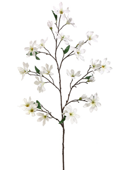 Magnolia Flowering Branches Cream Flowers 44""