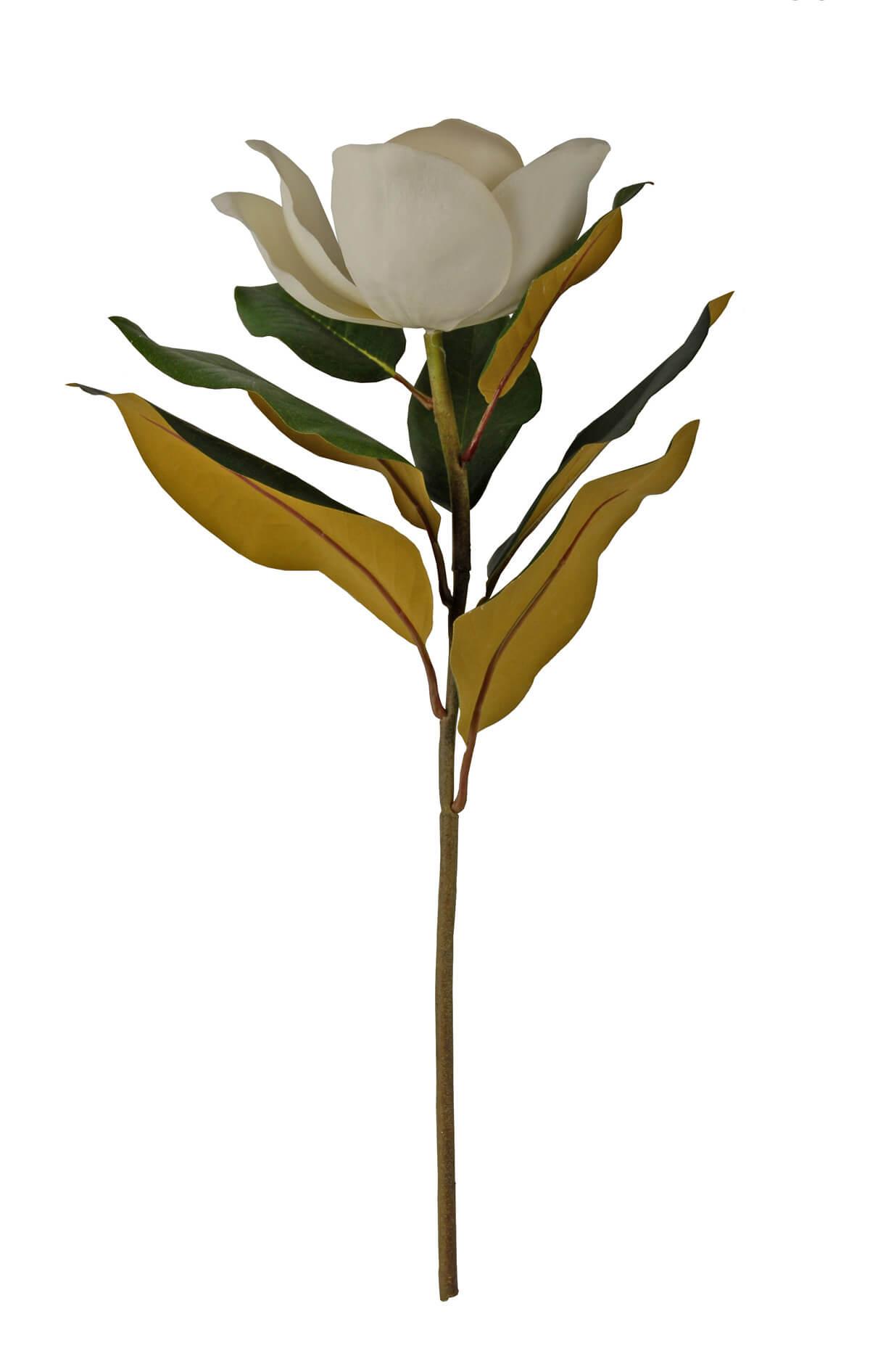 Silk Magnolia Spray 22 Quot