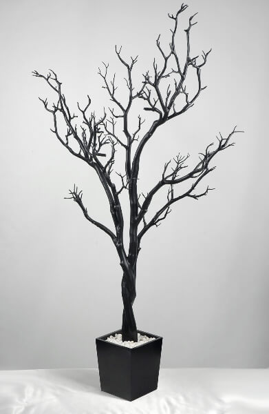 Black Manzanita Wedding Display Tree 4 Feet Potted