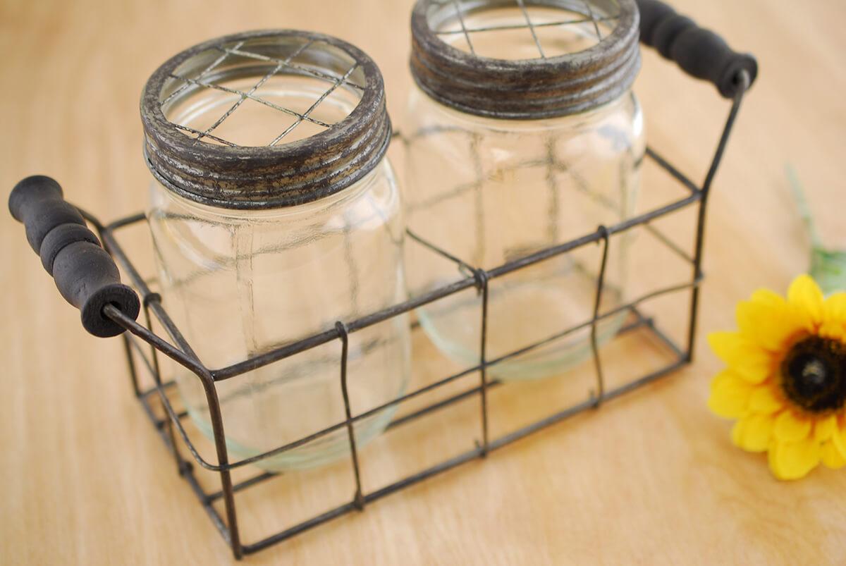 Mason Jar Vase with Frog Lid (Set of 2 Jars)