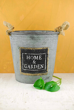 Metal Bucket Garden 8.5in