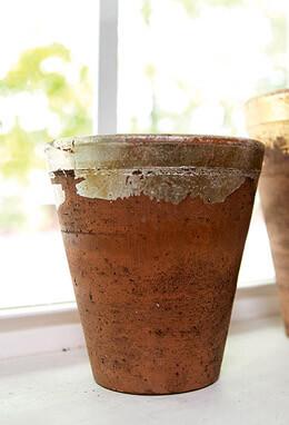 Silver Leaf Havana Pot   5.5in