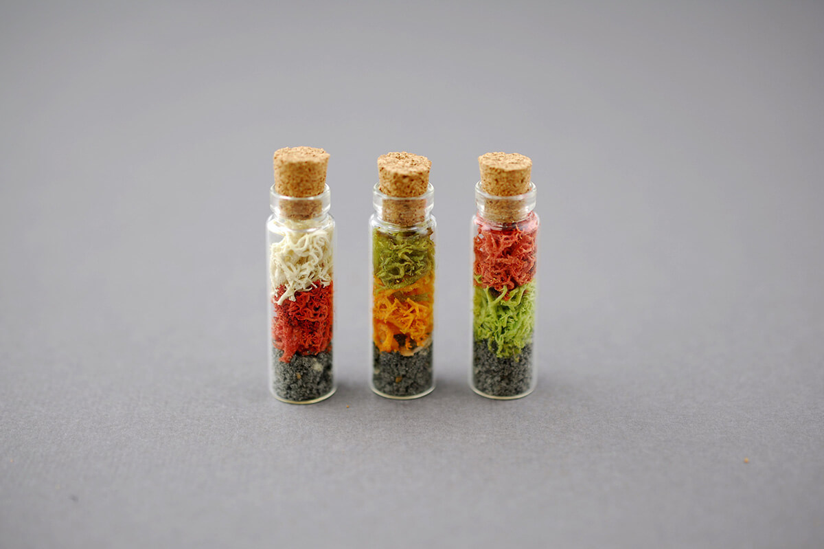 Mini Glass Bottles With Cork 2ml 1 375in Pack Of 12