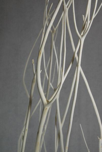White Mitsumata Branches 4 Foot  (4 branches)