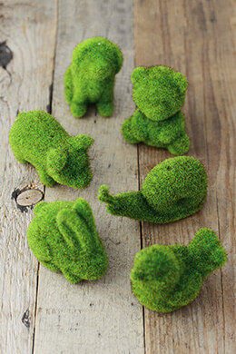 Moss Animals (Set of 6)