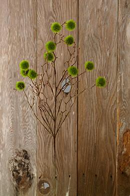 Moss Ball Branch 36in