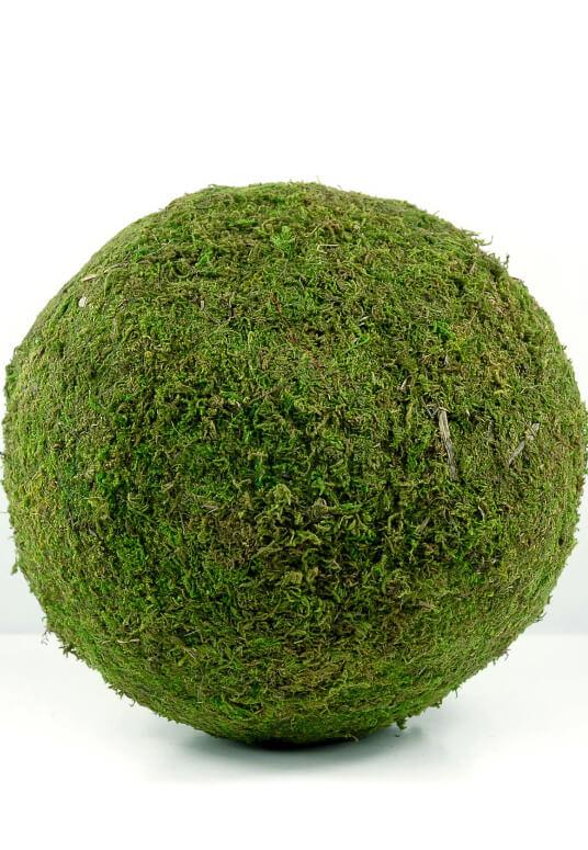 Moss Ball 12in