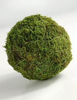 Moss Ball 2in