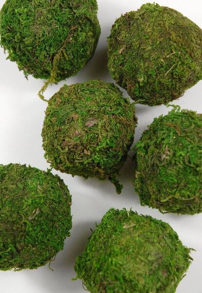 Natural Moss Balls 2 Inch 6 Balls
